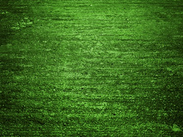 Green Fur Blanket Texture Photohdx