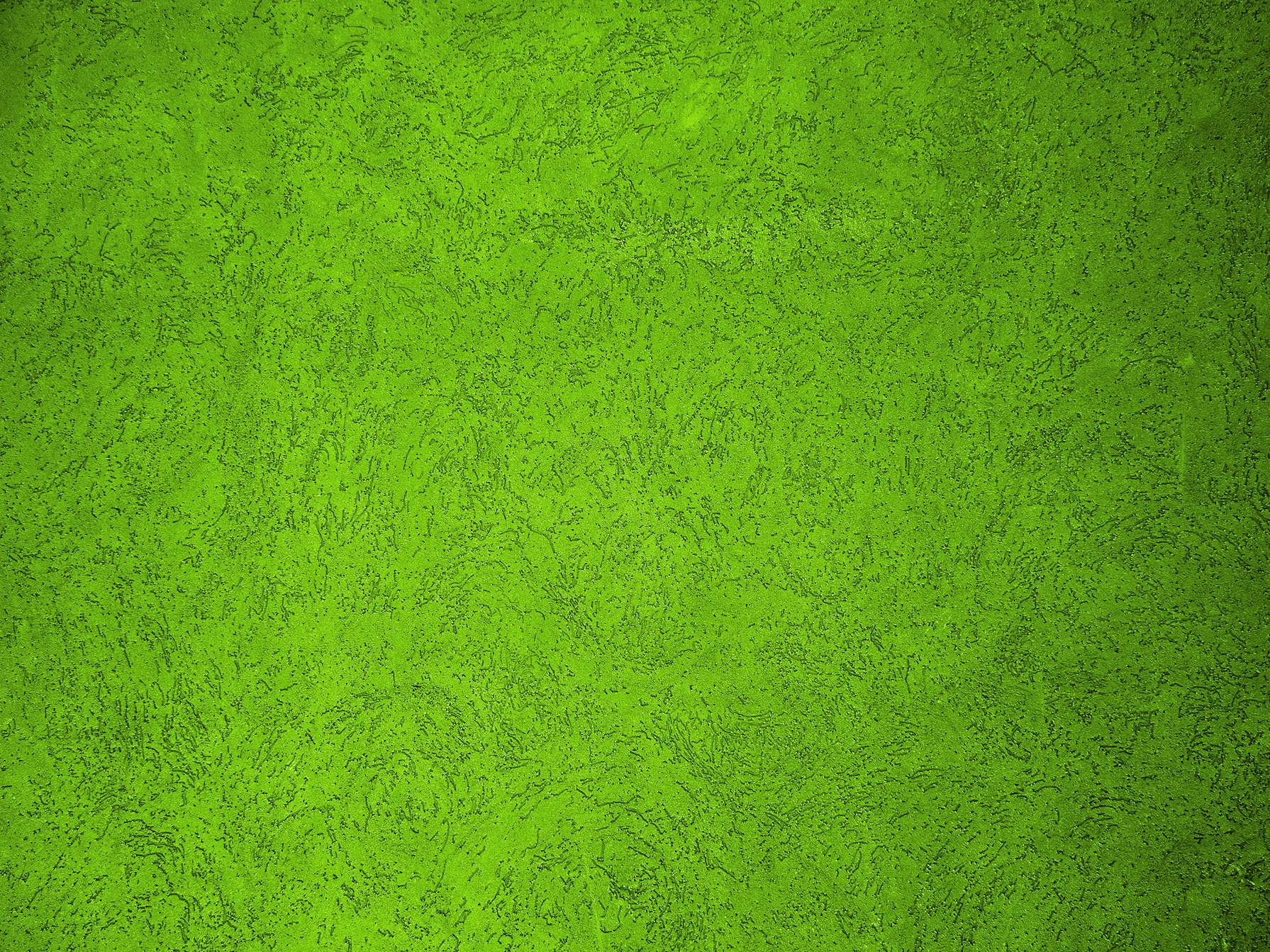 Green Wall Texture Background