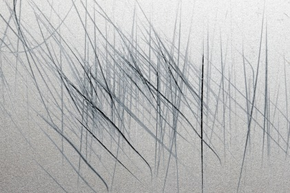 Silver Metal Paint Scratched Vertically Texture