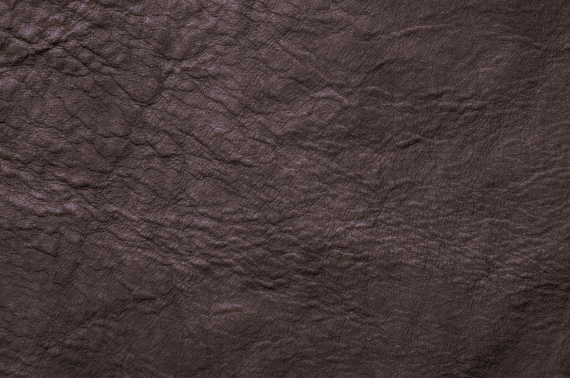 dark brown wrinkled leather background photohdx