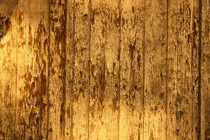 Yellow Old Wood Fence Planks