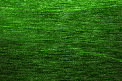 Abstract Green Horizontal Fibers Texture