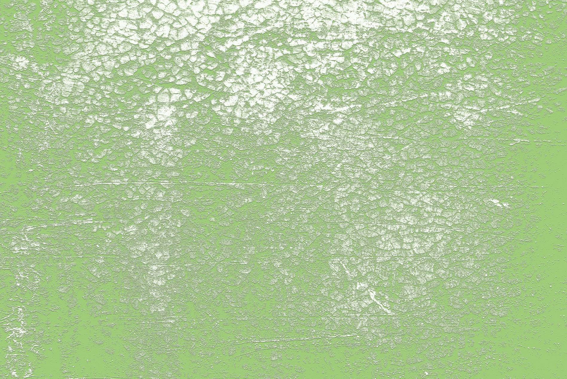 Light Green Vintage Background Texture