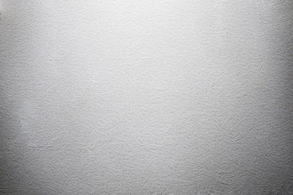 White Embossed Paper Texture Backdrop
