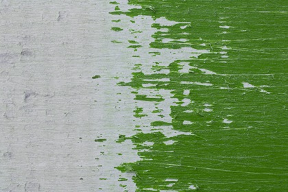 White Green Half Withered And Scratched Paper Texture Grungy Background