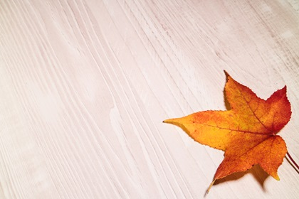 White Wood Background With Big Yellow Leaf In Corner