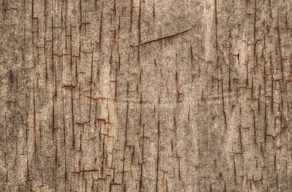Dirty Cracked Grungy Texture Background
