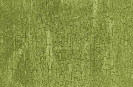 Grungy Green Cracked Wall Texture