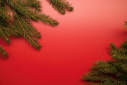 Red Christmas Styled Background With Fir Branches