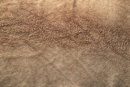 Vintage Fluffy Leather Texture