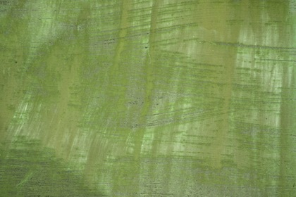 Green Grunge Painted Background