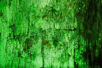 Green Grungy Cracked Wood Texture