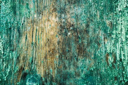 Green Grungy Wood Texture