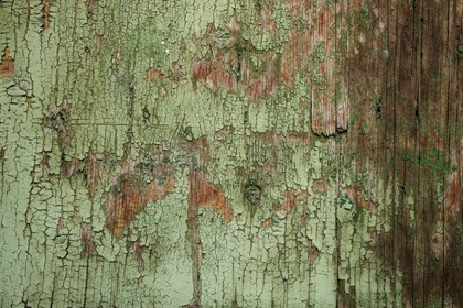 Grungy Green Painted Wood Texture