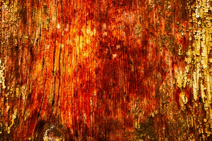 Red Grungy Horror Halloween Background